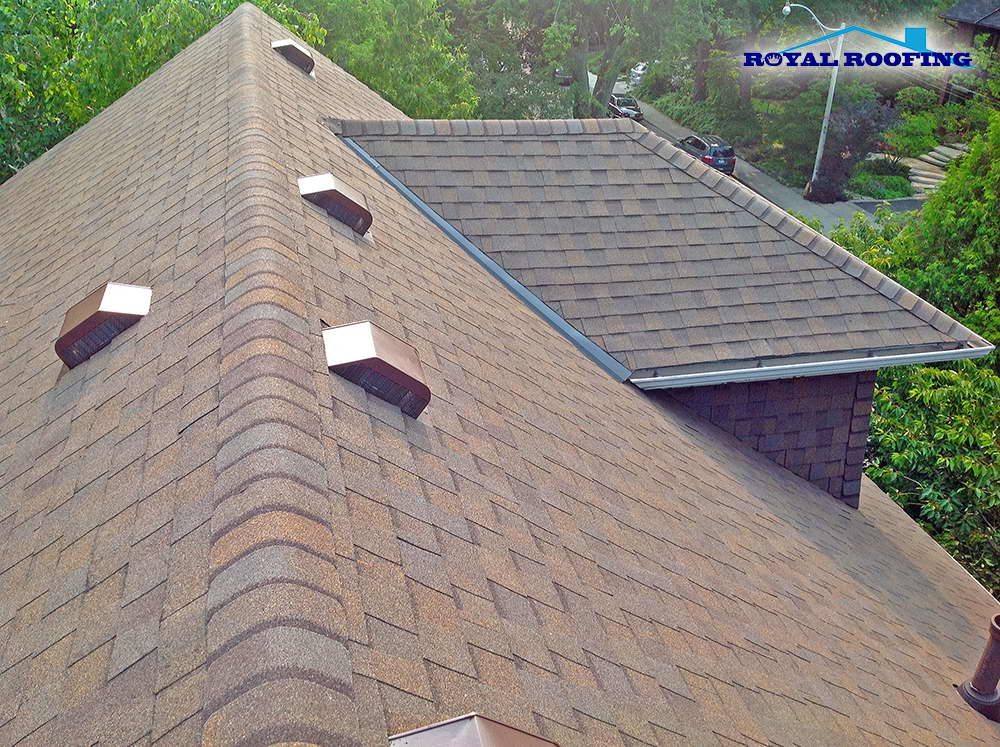 shingles-roof-replacement-6